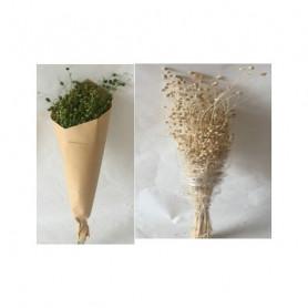 Bouquets Lino Grass 100g