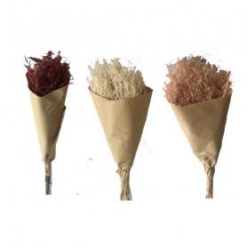 Bouquet Statice 100g