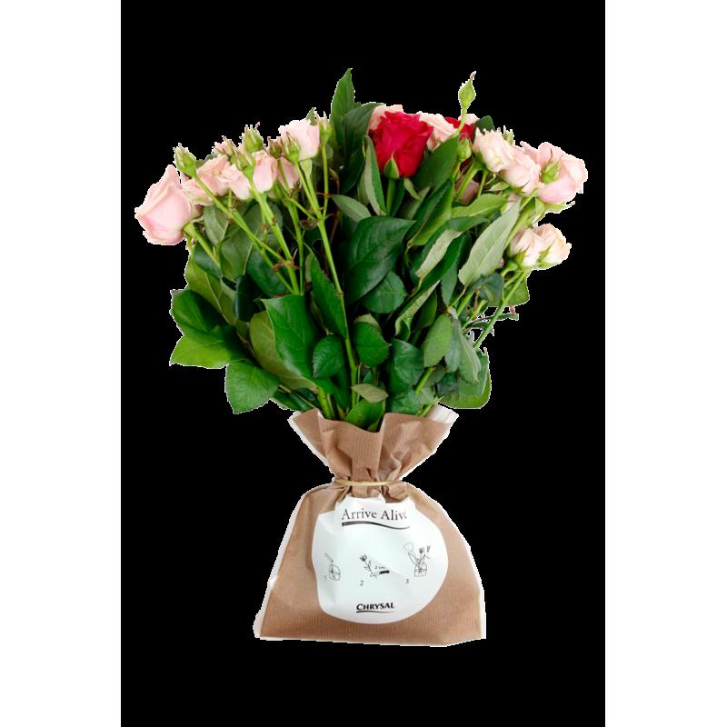 Sachet de conservation de bouquet Aline - grossiste fleuriste