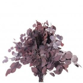 Bouquet de Populus -...