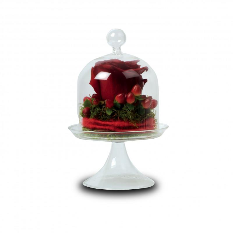 Cloche sur pied transparente - Grossiste fleuriste St Valentin
