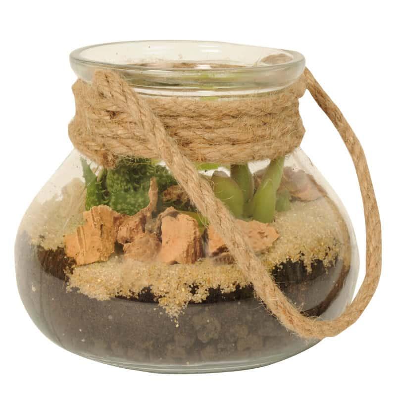 Terrarium en verre avec cordelette - Grossiste pour fleuriste décoration