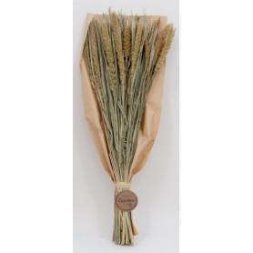 Bouquet de Millet 55/60 cm