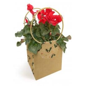Sac cartonné - Grossiste fleuriste déco Noël pas cher prix bas tendance