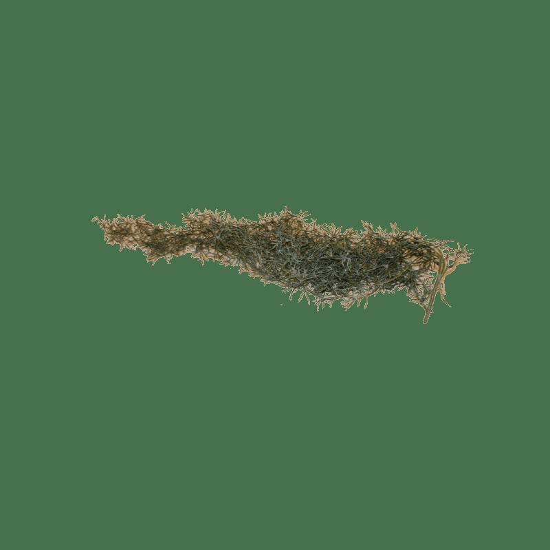 Chute de Tillandsia artificielle - Fleurs artificielle grossiste déco
