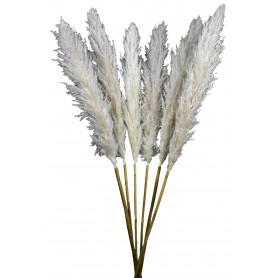 Bouquet de pampa - Chatou