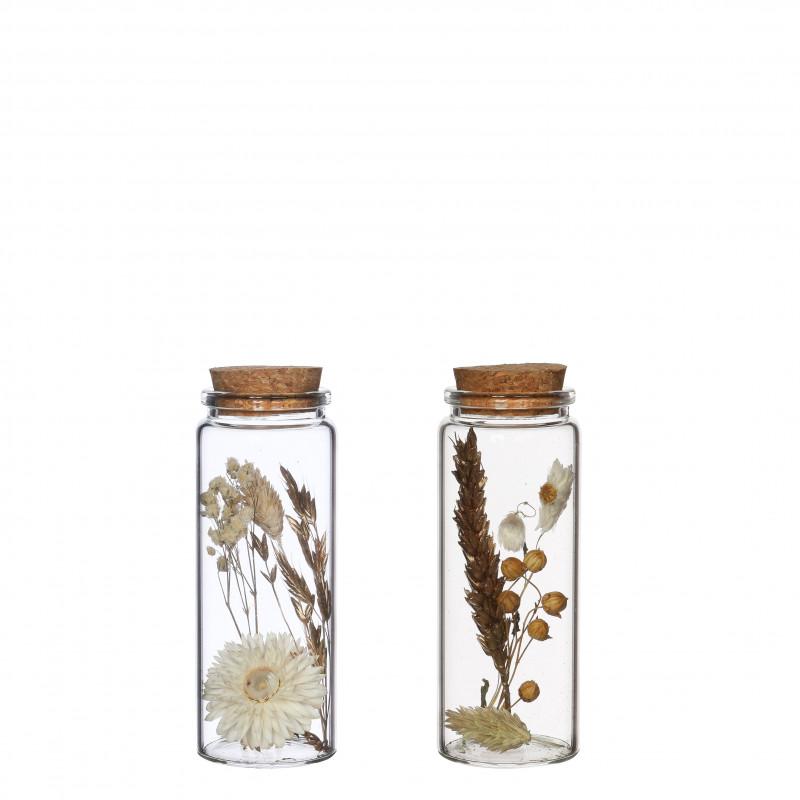 Flacon élégant fleurs séchées - 2 tailles - Grossiste fleuriste