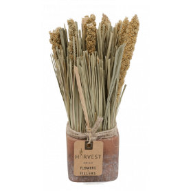 Bouquets secs en pot 7x23cm...