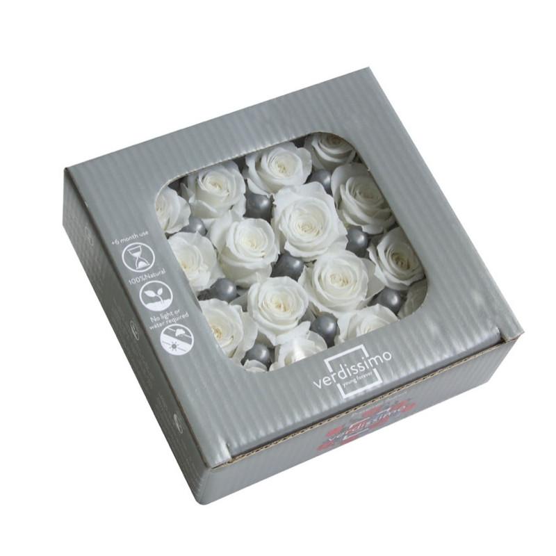 Roses princesses - Plusieurs coloris - grossiste fleurs stabilisées