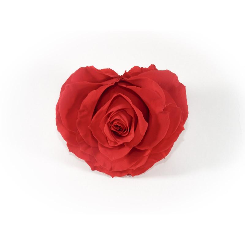Rose éternelle forme cœur D.8cm - fleurs stabilisées cadeau