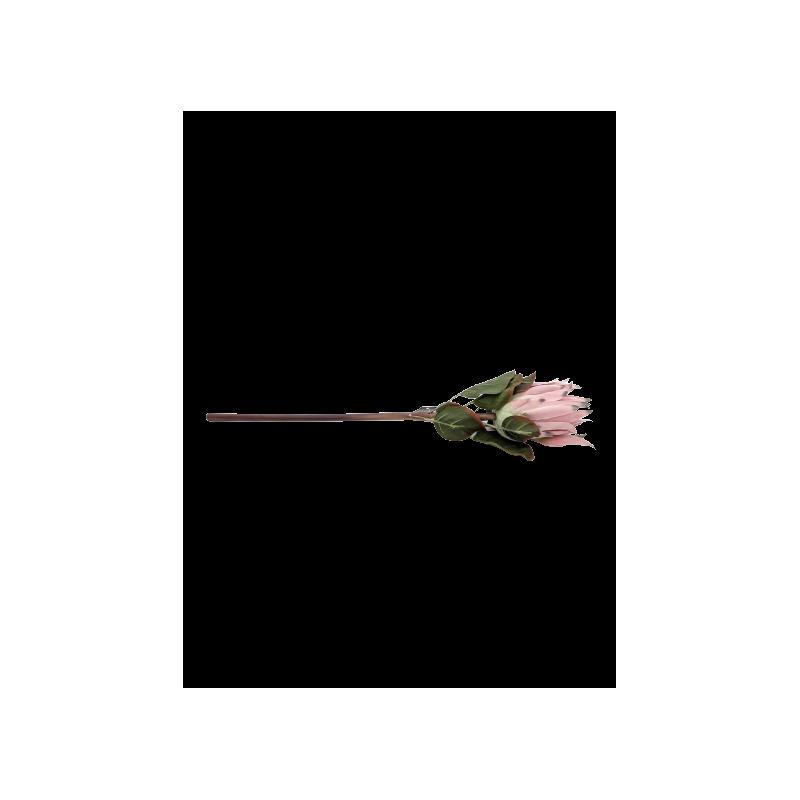 Branche de Protea - 58cm - grossiste fleurs artificielles