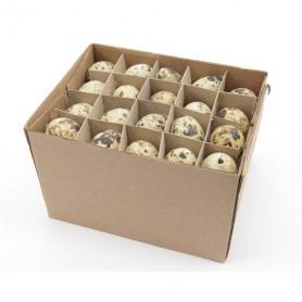 Boite de 60 œufs de caille