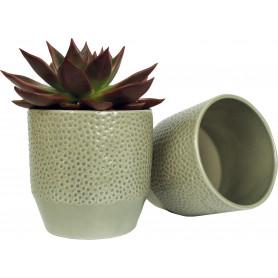 Pot Pisa motifs pois - Plusieurs tailles - grossiste fleuriste