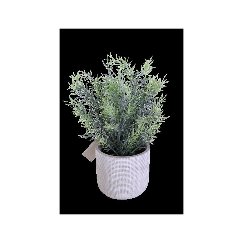 Herbe en pot Gema - H. 25cm - décoration grossiste