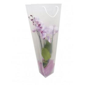 Étui à orchidée