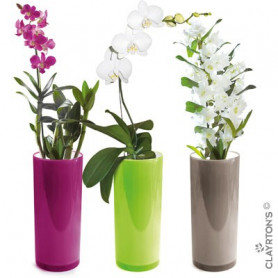 Vase tube TUTTI