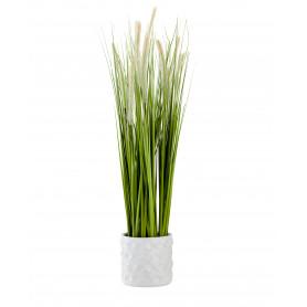 Herbes hautes en pot décoratif D. 12 cm x H. 82 cm