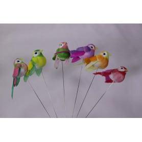 Oiseaux sur pics multicoloris 6 cm
